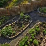 backyard vegetable garden ideas vlfzvial decorating clear