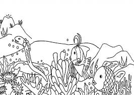 sea plants coloring pages the most amazing coral reef coloring page regarding inspire to