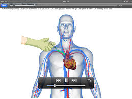 Anatomy And Physiology Apps Physiology Learning Pro Android Apps On Google Play