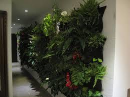 interior garden wall lawn u0026 garden fresh greenry plants walls vertical gardens in