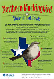 how well do you know the state bird of texas