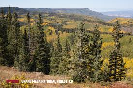 National Forest Map Colorado grand mesa national forest outthere colorado