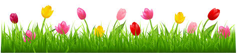tulips clipart free download clip art free clip art on