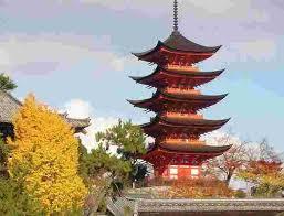 japan tours holidays intrepid travel au