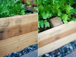 raised garden beds how to build raised vegetable garden plots
