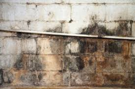 Basement Waterproofing Specialists - why is my basement leaking 3 reasons behind water is in your