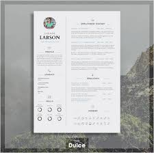 awesome professional resume cv template gallery simple resume