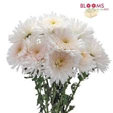 wedding flowers in bulk fall wedding flowers wholesale blooms by the box