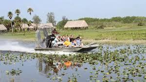 fan boat tours miami sw safari airboat ride miami expedia