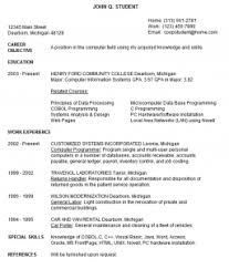 Best Looking Resume Format by Strikingly Ideas Resume Guidelines 14 25 Best Ideas About Resume