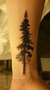 cedar silhouette by josh yelp