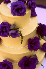 purple and yellow designs home design u0026 architecture cilif com