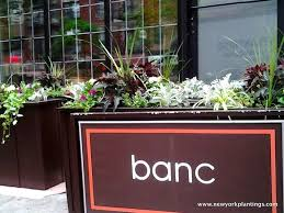 Hanging Planter Boxes by 52 Best Custom Ipe Wood Planter Box Design By New York Plantings