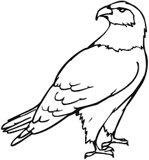 eagle coloring page free printable bald eagle coloring pages for