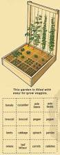 get gardening 10 square foot garden ideas and tips vegetable