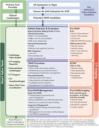 journal of management style guide 2017 acc expert consensus decision pathway for transcatheter
