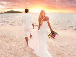 Wedding Planning Websites Wedding Planning Checklist Online Wedding Planner Allseated