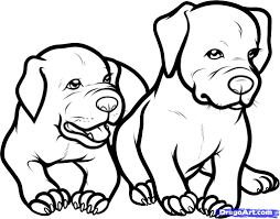 pit bull clipart coloring page pencil and in color pit bull