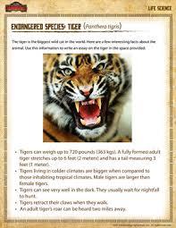 endangered species tiger u2013 free 4th grade science worksheet