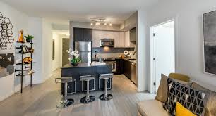 ore 82 are pet friendly luxury apartments in se washington dc