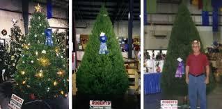 roberts christmas tree farm