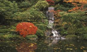 small pond waterfall japanese japan garden famous gardens in