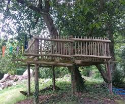 tree houses and tree platforms