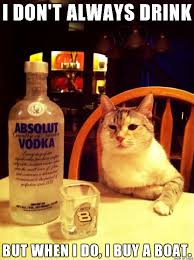 Drunk Cat Meme - most interesting drunk cat meme on imgur