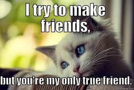 True Friend Meme - my only true friend quickmeme