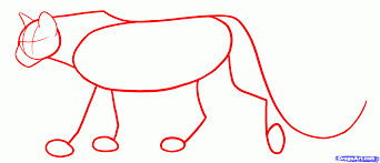 7 how to draw cougars mountain lion