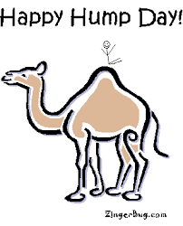 Sexy Hump Day Memes - happy hump day glitter graphics comments gifs memes and