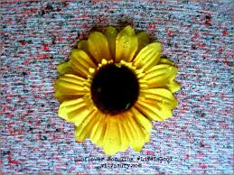 Vidga Hacks by Sunflowers For Tina Lifeisgood Microblogmonday Vidya Sury