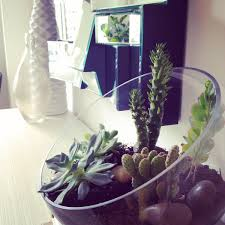 Plant For Bedroom Tips And Tricks For Using Plants In Modern Interior Design Plant