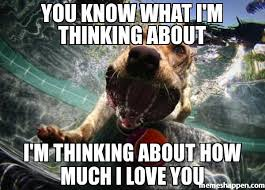 Thinking Of You Meme - you know what i m thinking about i m thinking about how much i love