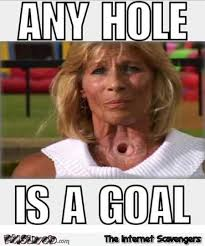 Adult Humor Memes - any hole is a goal adult humor pmslweb