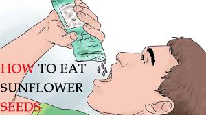 how to eat sunflower seeds youtube