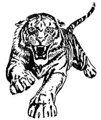 tiger paw coloring free coloring pages art coloring pages