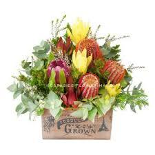Flowers For Men - flowers for men catalogue northside flower market