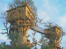 tree house designs inspirational unique tree house designs inside