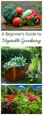 vegetable gardening a guide to growing your own food