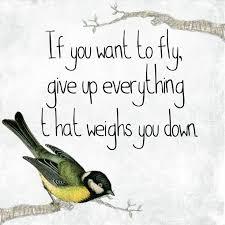 inspirational bird quote freedom free stock photo domain