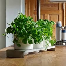 Indoor Garden by U Herb Indoor Garden Intoconcrete