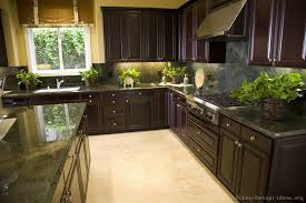 Ideas For Refinishing Kitchen Cabinets Pictures Of Kitchens Traditional Dark Espresso Kitchen Cabinets