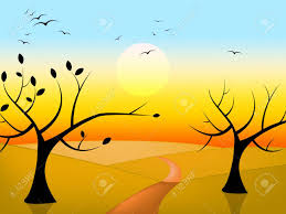 tree birds meaning sun woods and stock photo picture and