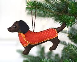 best 25 christmas dachshund ideas on pinterest weiner photos