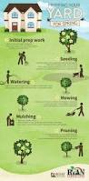 best 25 lawn care ideas on pinterest lawn care tips lawn and