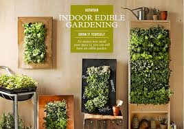 indoor vegetable gardening ideas u2013 erikhansen info
