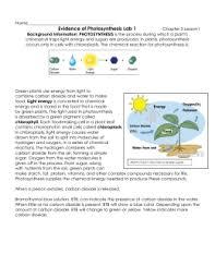 Lab Bench Photosynthesis Photosynthesis Respiration Elodea Lab