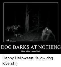 Dog Barking Meme - 25 best memes about dog barking at nothing dog barking at