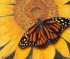 sunflower butterfly painting by eileen blair